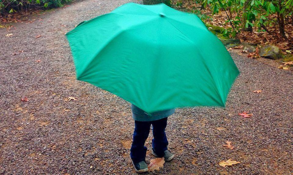 Odyssey under an umbrella.